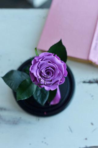 Роза в колбе Mini ОПТОМ Выс*Диам*Бутон (22*12.5*6см), Цвет лиловая