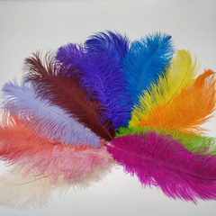 Перья страуса  декоративные  30-35 см. (цена за 1 шт.) (выбрать цвет)