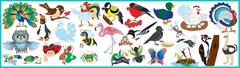 Магнитный набор: «Насекомые и птицы»