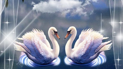 Алмазная Мозаика + Багет 40x50 Два белых лебедя под облаком