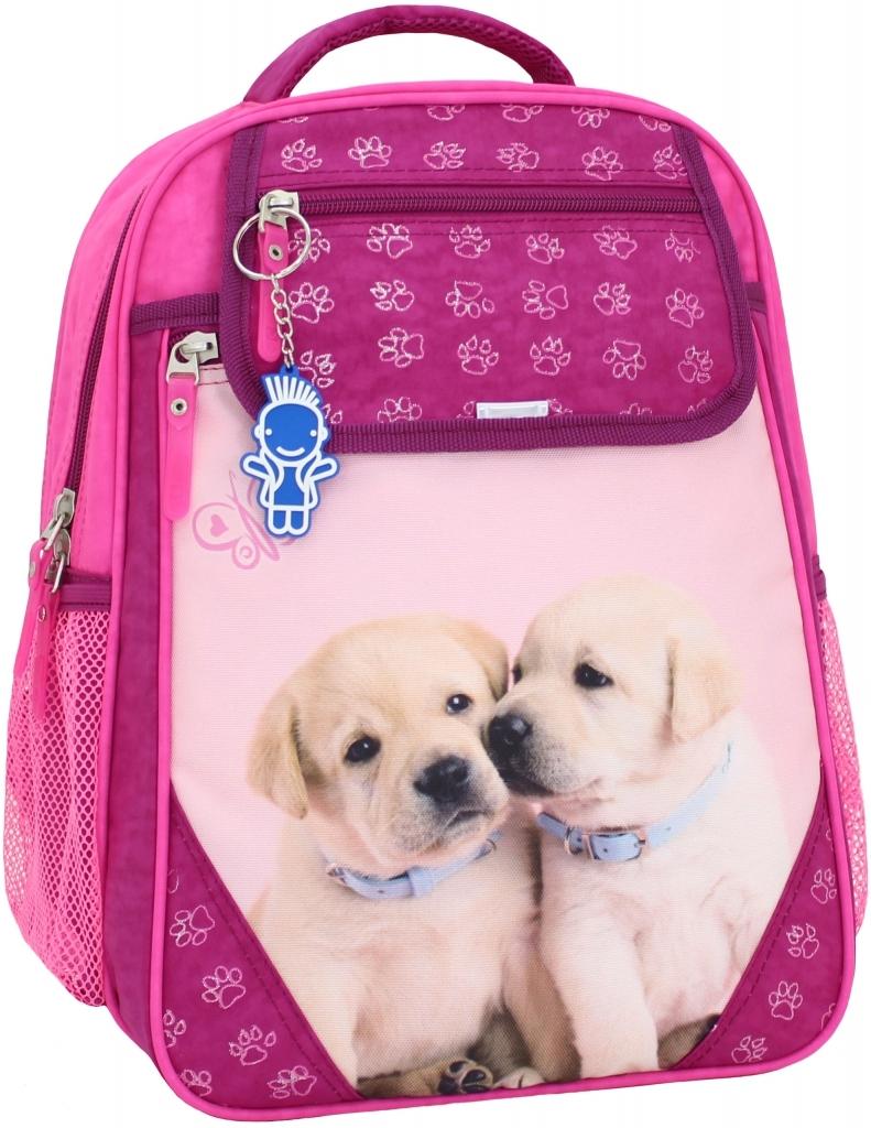 Школьные рюкзаки Рюкзак школьный Bagland Отличник 20 л. 143 малина 118 д (0058070) 6fc3f254b4f9c09c037e3ee7b40f5309.JPG