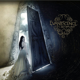 Evanescence / The Open Door (Limited Edition)(Coloured Vinyl)(2LP)