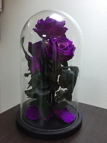 Вечная роза в стеклянной колбе куст фиолетовая (Элит)
