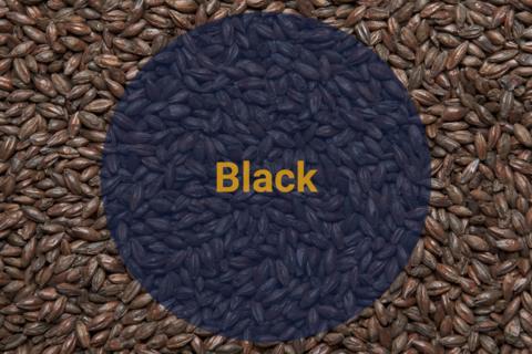 Солод Жженый Черный / Black, 1200-1400 EBC (Soufflet), 1 кг