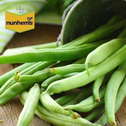 Nunhems Донана семена гороха (Nunhems / Нюнемс) донана.jpg