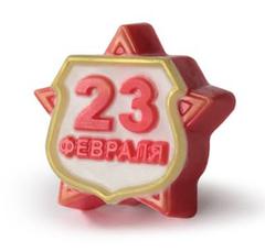 Пластиковая форма для шоколада муж.  23 февраля значок 65х85мм