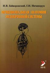 Функциональная анатомия эндокринной системы. Учебное пособие