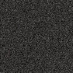 Искусственная кожа Bielastisch (Биеластиш) 238-2339