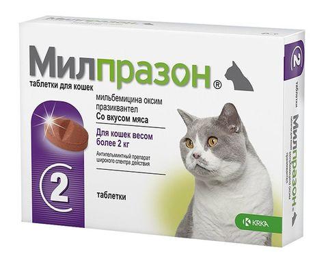 Милпразон для кошек таблетки