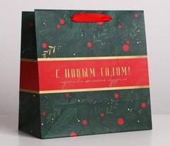 Пакет крафтовый квадратный «Пусть всё сбудется», 22 × 22 × 11 см, 1 шт.