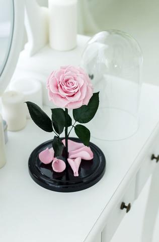 Роза в колбе розовая (VIP)