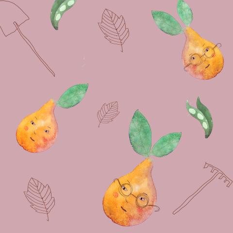 Груши на розовом
