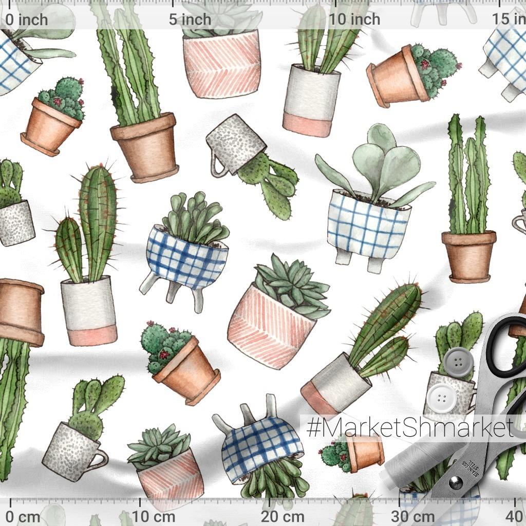 Cute house plants. Домашние растения