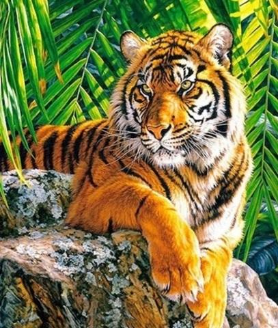 Алмазная Мозаика 30x40 Тигр на камне (Арт. MTC7513 )