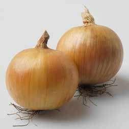 Репчатый Вольф F1 семена лука репчатого (Hazera / Хазера) Вольф_F1.jpg
