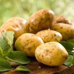 Картофель свежий (Азербайджан) / 1 кг