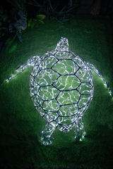 Световая Черепаха