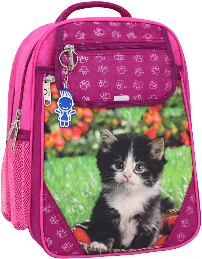Школьные рюкзаки Рюкзак школьный Bagland Отличник 20 л. 143 малина 59 д (0058070) 18091ec91aec4f3a9a5f2aa73c0a18ca.JPG