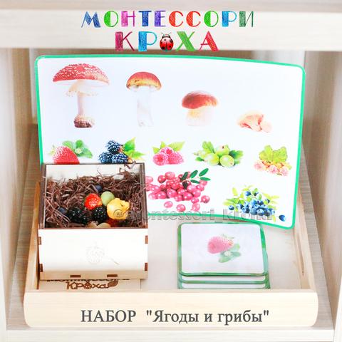 КАРТОЧКИ МОНТЕССОРИ НАБОР «Ягоды и грибы»