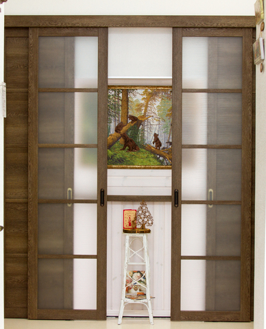Перегородка на четыре полотна, 2 глухих и 2 стекло канны.