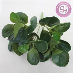 Искусственная зелень листья Толстянки, букет 26 см.