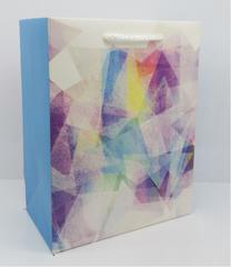 Пакет подарочный с матовой ламинацией и глиттером Красивая абстракция 18х23х10 см (M).
