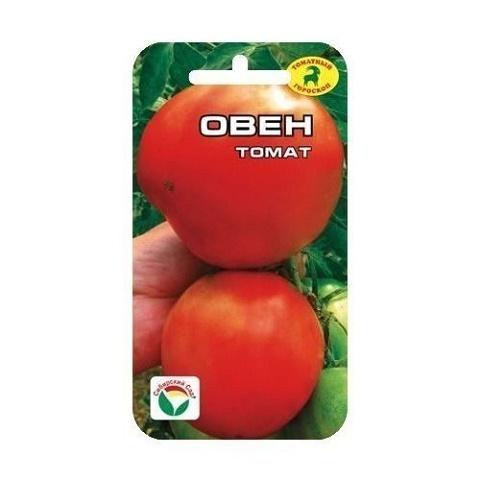 Овен томат (Сиб сад)