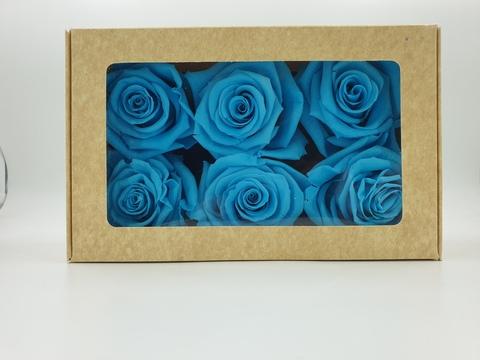 Стабилизированный Бутон Розы Optimum Flowers Standart . Цвет Бирюзовый (Диаметр 7см)