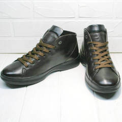 Кожаные ботинки кроссовки демисезонные мужские Ikoc 1770-5 B-Brown.