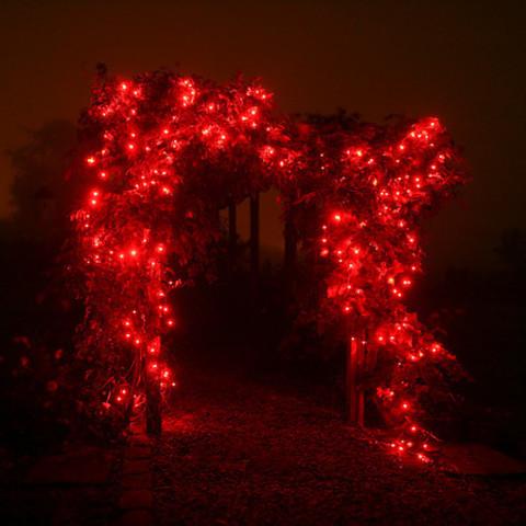 нити уличные гирлянды для деревьев красные