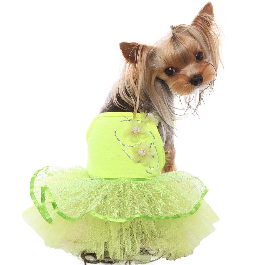 121 PA Платья для собак Тинкербелл