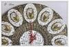 """Часы настенные """"Розы в завитках"""""""