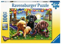 Puzzle Puppy Picnic 100 pcs