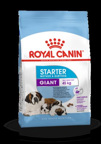 ROYAL CANIN GIANT STARTER 4 кг