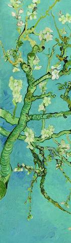 Əlfəcin Van Gogh 2