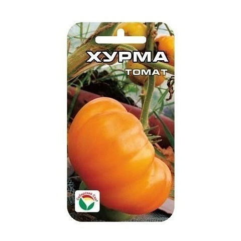 Хурма 20шт томат (Сиб сад)