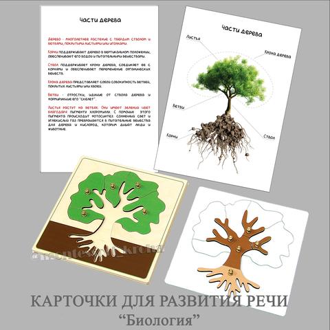 КАРТОЧКИ ДЛЯ РАЗВИТИЯ РЕЧИ. Ламинированный развивающий материал «БИОЛОГИЯ»