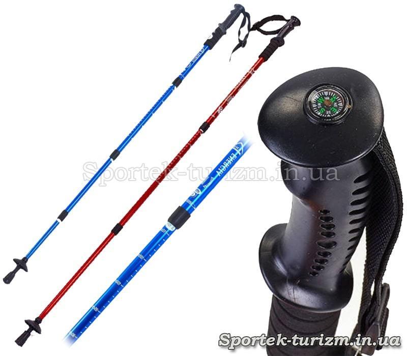 Треккинговые палки Energia TY-3924-1