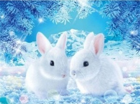 Алмазная Мозаика 20x30 Белоснежные кролики (арт. MTCH8208)
