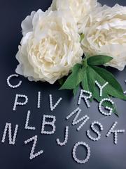 31683- Подвеска из серебра с ослепительными цирконами буква P