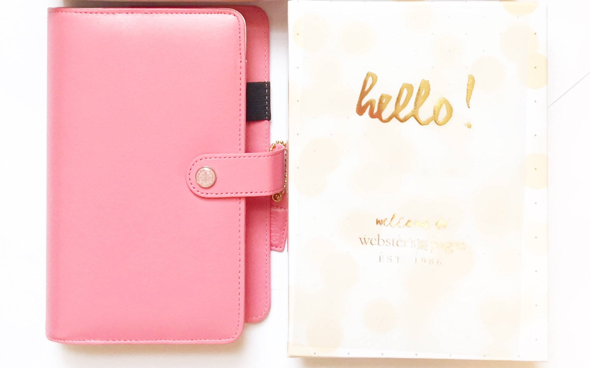 Планер PERSONAL PLANNER: Light Pink  by Websters Pages (БЕЗ внутреннего наполнения)