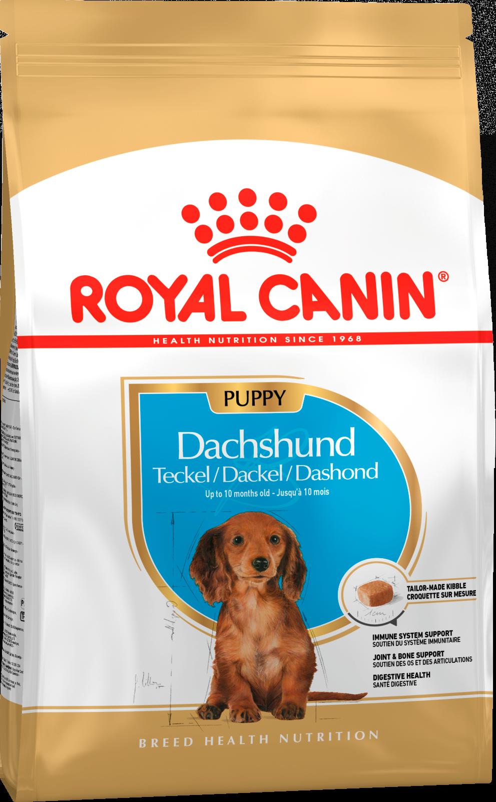 Royal Canin Корм для щенков собак породы такса, Royal Canin Dachshund Puppy 168015.png