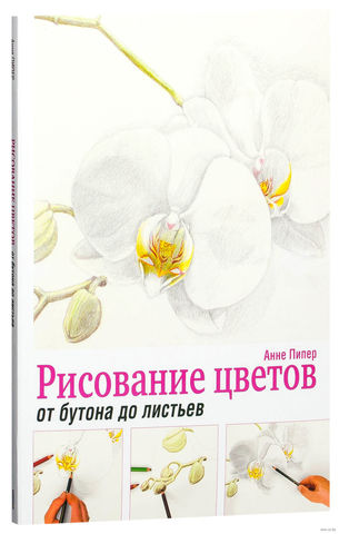 Фото Рисование цветов от бутона до листьев