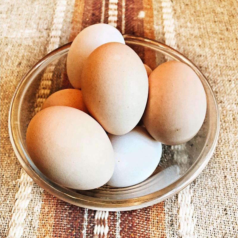Фотография Яйца домашние / 1 десяток купить в магазине Афлора