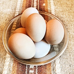 Яйца домашние / 1 десяток