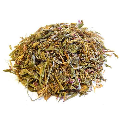 Травы Золототысячник centaurium-251.jpg