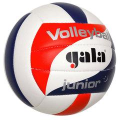 Волейбольный мяч JUNIOR