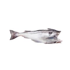 Пикша пбг, 5 кг