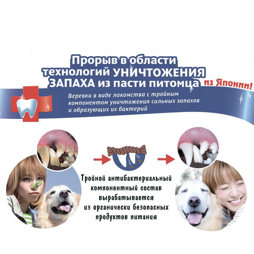 901307 - Твёрдые веревки-лакомство для чистки зубов собак и устранения запаха (10 шт.)