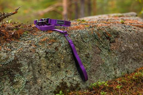 60100 Ошейник двойного типа RUKKA PETS BLISS COLLAR, цвет фиолетовый (760)